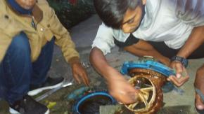 Perbaikan Pompa di MA Senjoyo & Pengupayaan Aliran